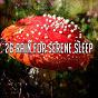 Compilation 26 Rain for Serene Sleep avec Ambient Rain