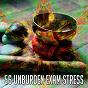 Compilation 56 unburden exam stress avec Ambient Forest