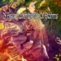 Album 29 peaceful ambience of storms de Rain Sounds & White Noise