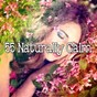 Album 55 naturally calm de Sleep Sounds of Nature