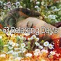Album 63 relaxing days de Nature Sounds Nature Music