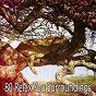 Album 80 relax you surroundings de Calming Sounds