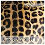 Album The music package collection: african soul, vol. 1 de Varous Artists