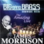 Album The amazing live de James Morrison / Big Band Brass / Dominique Rieux