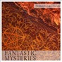 Compilation The music package collection: fantastic mysteries avec Nathalie Bonin / Christophe Boutin / Cyril Morin / Thomas Mercier / Arno Alyvan...