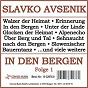 Album In den bergen, folge 1 de Slavko Avsenik