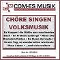 Compilation Chöre singen volksmusik avec Pfalzer Weinkehlchen / Trad , Schobert / Mainzer Hofsanger / Raymond, Neubach, Beda / Rondo Classico...