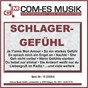 Compilation Schlager-gefühl avec Heider, Relin / Schairer, Thielmann / Angie van Burg & Jurgen Westphal / Jurgen Westphal / Ignatiadis, Jacobi...