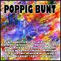 Compilation Poppig bunt avec Ennesto Monté / Ott / Lutin / Simonsen / Audenaerd...