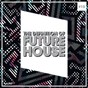 Compilation The definition of future house, vol. 15 avec Dankann / Sean Finn / Alfa Ape, Gérard / E M C K, Jay Frog / DJ Timstar...