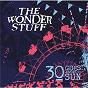 Album 30 Goes Around the Sun de The Wonder Stuff