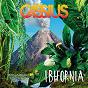 Album Ibifornia de Cassius