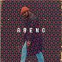 Album Walshy Fire Presents: ABENG de Walshy Fire