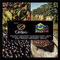 Compilation Cafe octavio - nova brasil fm avec Natiruts / Jorge Vercilo / Daniela Mercury / Os Paralamas do Sucesso / Ivan Lins...