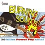 Compilation Burning sounds - 20 killer power pop cuts! avec Dwight Twilley / The Flamin' Groovies / The Raspberries / Brinsley Schwarz / Klaatu...