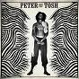 Album Peter tosh 1978-1987 de Peter Tosh