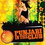 Album Punjabi in the club de Ricky Kej