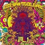 Compilation Lesser-known psychedelic works, vol. 1 avec Twentieth Century Zoo / The Nature Group / Jeremiah / The Beau Brummels / The Trio of Time...