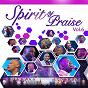 Album Spirit of praise, vol. 6 (live at carnival city) de Spirit of Praise