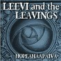 Album Hopeahääpäivä de Leevi & the Leavings