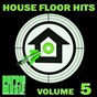 Compilation House floor hits, vol. 5 avec Jamie Lewis, Nikos Diamantopoulos / Diva Avari, the French House Mafia / The Dreamers, Manu LJ / Heartsaver, Amrick Channa / Rob Hayes...