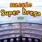 Compilation Seleção super brega avec Charlys / Kaco & Marcela / Banda Xeiro Verde / Suzane & Simone / Os Panteras...