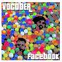 Album Facebook de Vocoder